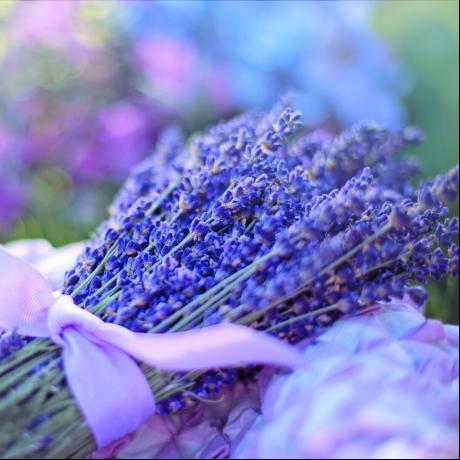 flores del ramo de novia lavanda